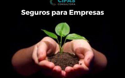 Nuevos servicio PRODUCTOR ASESOR DE SEGUROS.